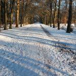 Deel 7: ademhalingsoefeningen en kou-ervaring